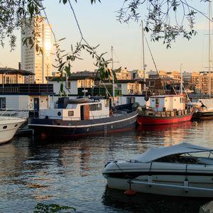 Pampas Marina 4