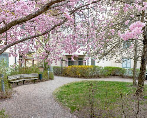 WEB_2019-04-26_Trollesundsvagen_50_03