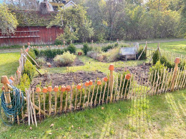 Inhägnat trädgårdsland