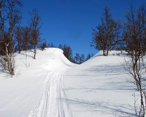 Välkommen till snösäkra Fjällnäs!