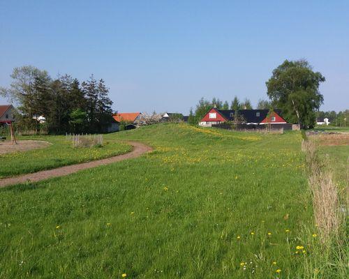 Området gränsar till äldre hus på Lorenz väg