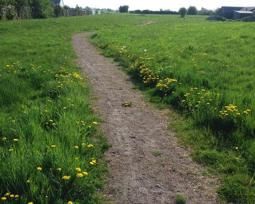 En fin liten promenadstig går runt hela området.
