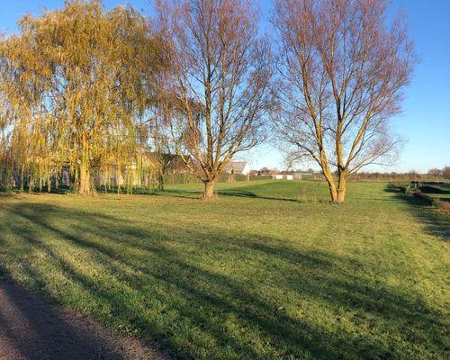 Grönområde som gränsar direkt till tomterna